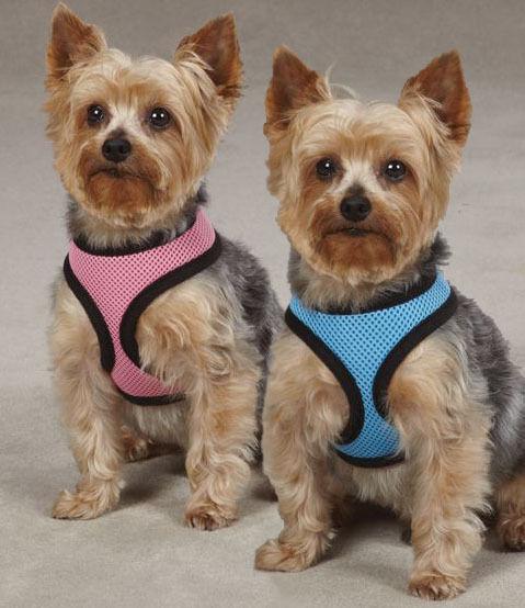 Soft Mesh Dog Harness Comfort Vest Pastel Pink Blue