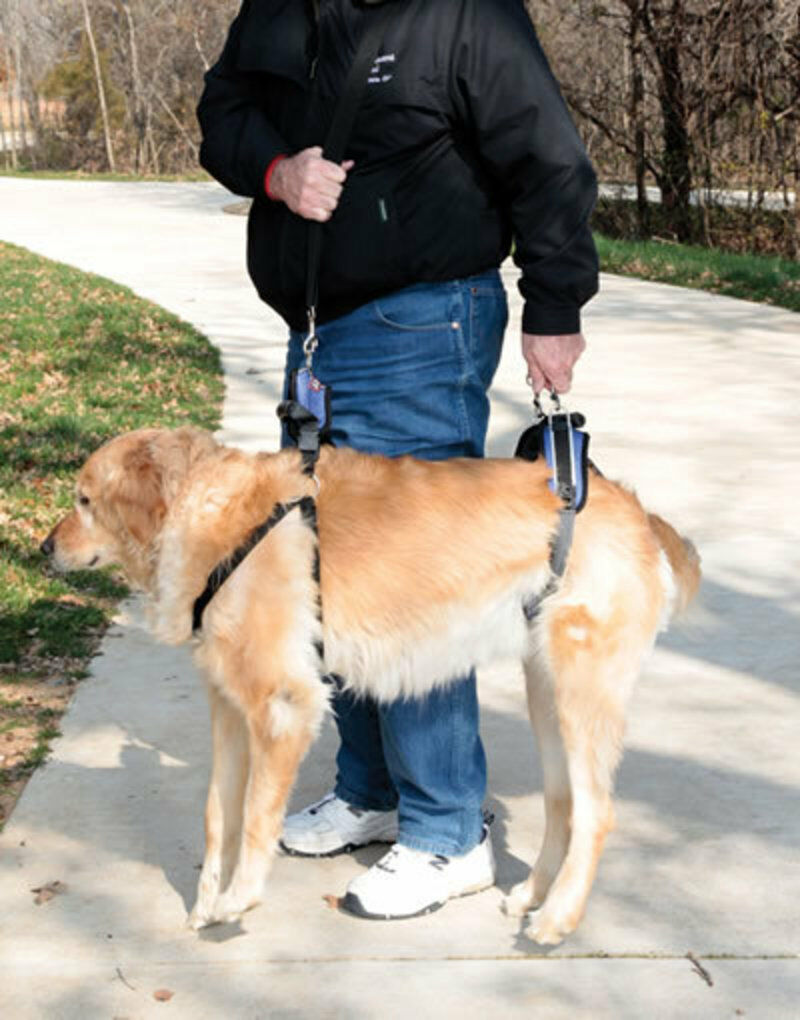 Solvit CareLift Medium Dog Pet Full Body Front Back ...