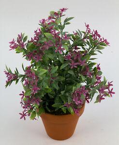 sternbl tenbusch 26cm fuchsia im topf ga kunstpflanzen k nstliche pflanzen ebay. Black Bedroom Furniture Sets. Home Design Ideas