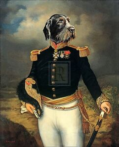 Details about THIERRY PONCELET military humour DOG IN UNIFORM print