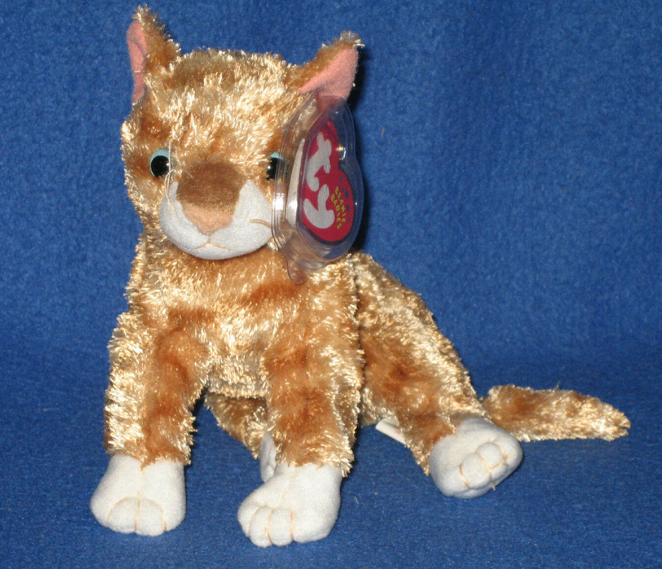 14d0d8a5417 Orange Cat Beanie Baby