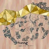 Tunng - Comments of the Inner Chorus (20...