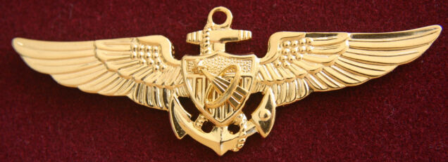 astronaut wings insignia - photo #37