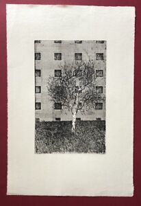 Ulrich Mumm, osdorfer albero, acquaforte, 1974, a mano firmata e datata