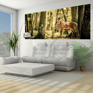 vlies wandbild tapeten fototapete wald hirsch pflanzen gr n waldweg 3fx2286vep ebay. Black Bedroom Furniture Sets. Home Design Ideas