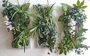 Verde Verticale QUADRO Pannello Verde piante fiori ...