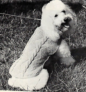 free Knitting Pattern | knitting | how to knit | Rosie Dog Coat