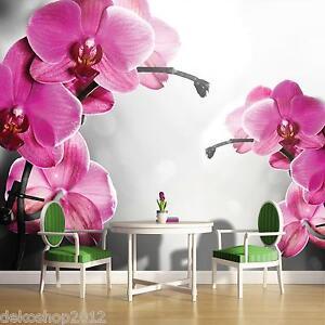 vlies fototapete fototapeten tapete tapeten foto bild. Black Bedroom Furniture Sets. Home Design Ideas