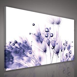 wandbilder canvas bild foto poster wandbild leinwand. Black Bedroom Furniture Sets. Home Design Ideas