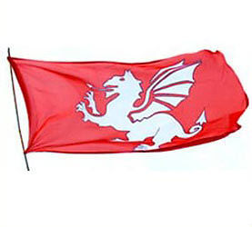 Anglo Saxon Flag http://www.ebay.com/itm/WHITE-DRAGON-FLAG-OF-THE-ENGLISH-ANGLO-SAXON-/190706563404