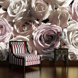 wandbild fototapete fototapeten tapete tapeten rosen weiss rosa blumen 3fx1625p4. Black Bedroom Furniture Sets. Home Design Ideas