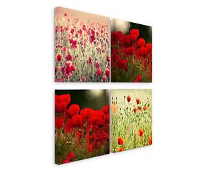 Wandbilder 4x30x30cm leinwandbild auf keilrahmen mohnblumen wiese bilder deko - Wandbilder keilrahmenbilder ...