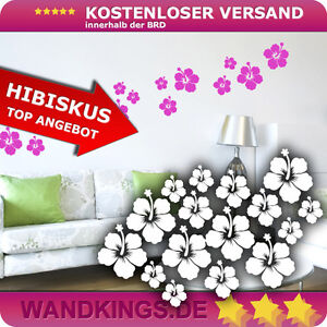 Wandkings-Wandtattoo-16-Hibiskus-Blueten-im-SET-Hawaii-Blume-Flowers-Ranke-NEU