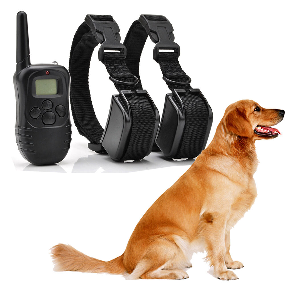Amp rechargeable 2 dog lcd shock amp vibrate remote dog training collarus