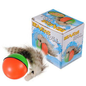Weasel Ball Battery Operated Motorized Moving Ball