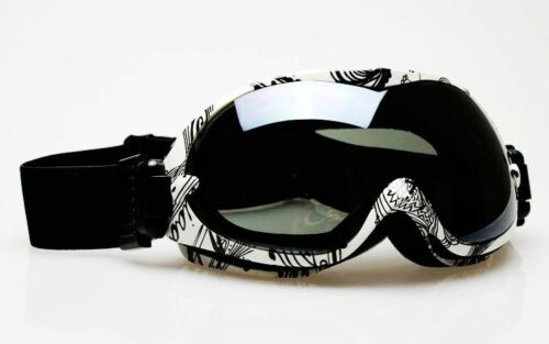 White/Black Frame Dual Lens Anti-Fog Ski Snowboard Goggles Dark Smoke Lens in Sporting Goods, Winter Sports, Clothing & Accessories | eBay
