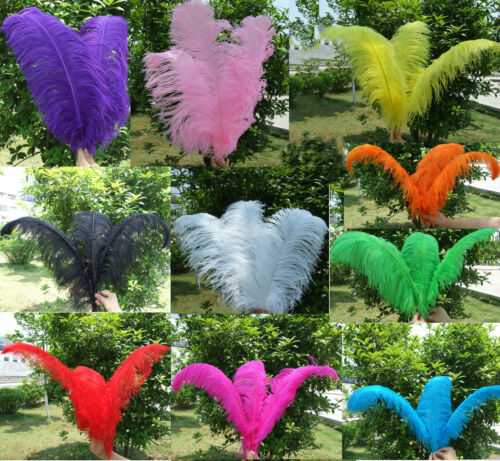 Wholesale 5PCS Quality Natural OSTRICH FEATHERS 6-30inch/15-75cm Color Selection in Crafts, Multi-Purpose Craft Supplies, Craft Pieces | eBay