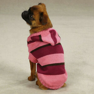 Free Dog Sweater Patterns For Teacup Yorkie | Dog Breeds Picture