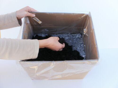 brauner champignon xxl 10 kg anzuchtset einfache. Black Bedroom Furniture Sets. Home Design Ideas