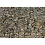 Komar Photo murale Stone Wall 368 x 254 cm 8-727