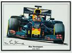 Max Verstappen Litho  RB15 - 2019 | Red Bull Racing