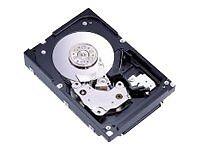 IBM SAS Hard Drives (HDD, SSD & NAS)