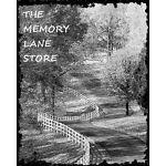 THE MEMORY LANE STORE