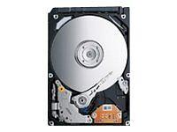 Toshiba Computer-Festplatten (HDD, SSD & NAS) mit SAS Schnittstelle
