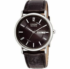 Citizen Eco-Drive Men's Stainless Steel Case Adult Watches