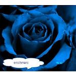 erichmarc