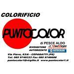puntocolor