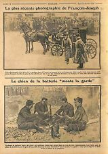 Emperor Franz Joseph I of Austria in Vienna/Poilus Artilleur Chien Dog WWI 1914