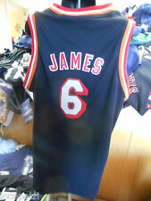Adidas NBA Miami Heat LeBron James Youth Swingman Hardwood Classics Jersey NWT S