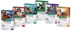 Bayer ADVANTAGE 40 / 80 / 100 / 250 / 400 for Cats and Dogs - 4 Pipettes