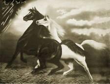 "SPIRITED HORSES #2 STORM - THE ALARM *CANVAS* Art Print - SEPIA - 11"" x 8 1/2"""