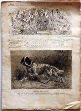 LA CACCIA GIORNALE ILLUSTRATO  DELLO SPORT ITALIANO N.129 1881  SETTER LAVERACK