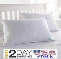 Feather Goose Soft Down Bed Pillow Set of 2 Pillows Cotton Cover- QUEEN
