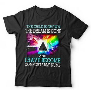 The Child Is Grown The Dream Is Gone Tshirt Unisex - Pink Floyd, Lyrics