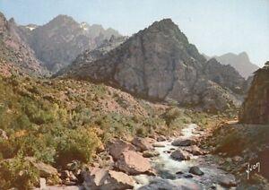 Corse Gorges de l'Asco ngl D8026