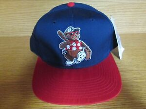 NWT Vintage Asheville Tourists Minor League Baseball Snapback Hat by Outdoor Cap