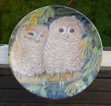 Wedgwood The Baby Owls Dick Twinney Bone China England Tawny Owl Chicks Plate