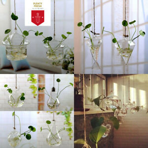 Christmas Colorful WALL HANGING BULBS Vases HOME&OFFICE DECOR Best Gift NEW