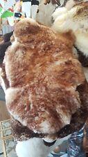 Schaffell ,LammFell Fellteppich fell  85x50 90x55cm weiss braun Muflon