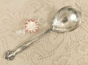 """VINTAGE / Grape (1904) ~ Sugar Spoon (6"""") ~ 1847 Rogers Bros Silverplate"""