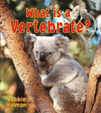 What Is a Vertebrate? Big Science Ideas Paperback