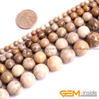 Natural Ammonite Chrysanthemum Stone Coral Fossil Round Beads For Jewelry Making