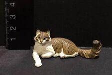 Kaiyodo Furuta Choco Q Pet Animal 4 Maine Coon Cat Figure A