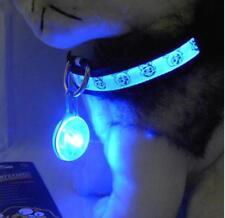 Pendentif pour Chiens Lumineux à LED Clip Transparent