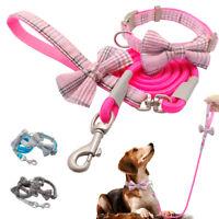 British Bowtie Dog Collar and Matching Lead Pet Puppy Cat Necktie Pink Blue Grey
