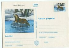 ROMANIA POSTAL CARD 70L WITH RIVER OTTER VIEW, LUTRA LUTRA, VERY CLEAN   (A694)